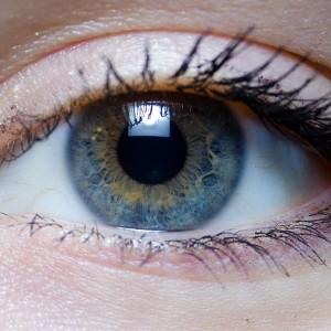 1024px-iris_-_right_eye_of_a_girl