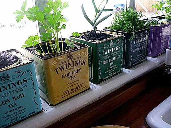 herb-windowsill-garden1